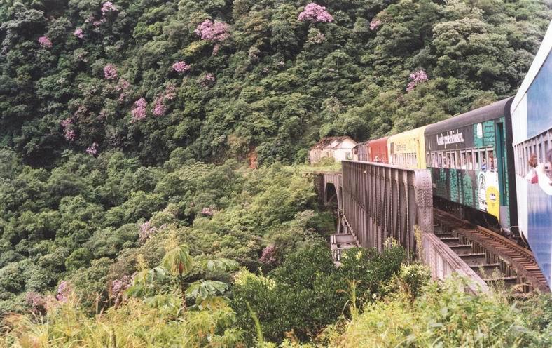 il Treno Serra do Mar